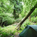 10 Camping tips you need to know