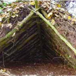 Choosing the Right Survival Shelters