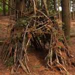 Building A Shelter with the Basics