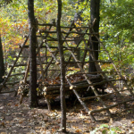 How to Build a Survival Shelter