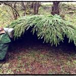 Thatched Bushcraft Shelter
