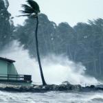 Hurricane Survival Skills