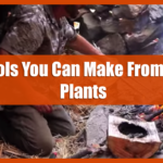 4 Tools You Can Make From JUST Plants