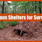 Types of Shelters for Survival