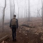 4 Survival Tips If You Get Lost In the Woods